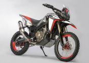 Honda Africa Twin Enduro Sports: feroz