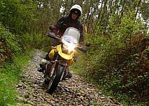 Trail Moto Series: diversión sobre el terreno