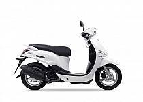 Yamaha D´elight 2014-2016